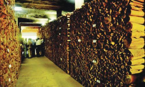 മറയൂർ ചന്ദന ലേലം 17ന് : ലേലത്തിന് 77.35 ടൺ ചന്ദനം