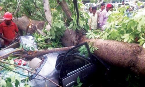 ഡൽഹിയിൽ ശക്തമായ പൊടിക്കാറ്റ് : വ്യാപക നാശനഷ്ടം