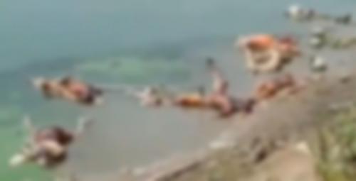 ബിഹാറിൽ കോവിഡ് ബാധിച്ച് മരിച്ച 150 പേരുടെ മൃതദേഹങ്ങൾ തള്ളിയത് ഗംഗാ നദിയിൽ